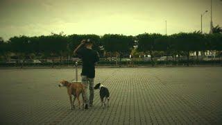 Bugoy na Koykoy - Kalmadong Naglalakad (Official Music Video)