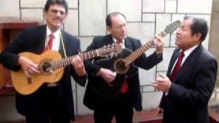 LICELY - Trio Los Tumis