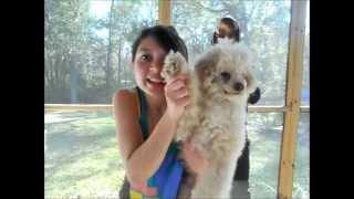 Glozell's YouTube Idol- Kelsey Singing Mercy- Duffy