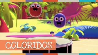 Coloridos - Palavra Cantada