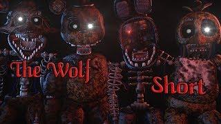 (FNAF SFM/Short) The Wolf - SIAMÉS