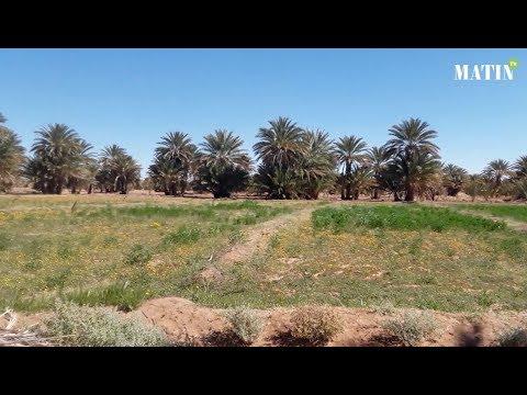 Video : Forum International de Zagora : Plaidoyer pour le développement et la valorisation des oasis