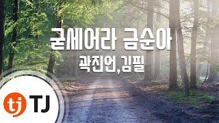 [TJ노래방 / 반키올림] 굳세어라금순아 - 곽진언,김필 / TJ Karaoke