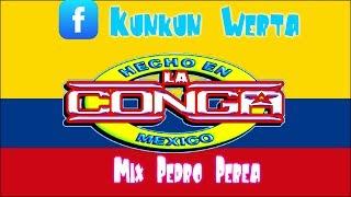 La media de ron | Cumbia | Sonido La Conga | Limpia