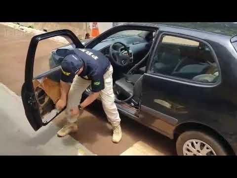 PRF apreende carro recheado com maconha no oeste paranaense - Cidade Portal