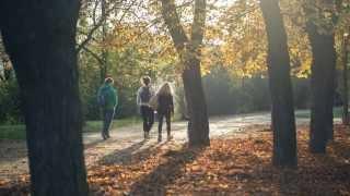 Podzim v Praze na Letné (Canon 5Dm3 RAW video)