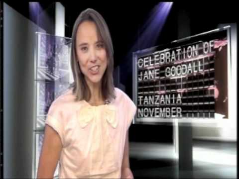 BBC Fast Track – Insider Guide (November 2010)