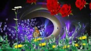 Mariposa - Danyel Gerard