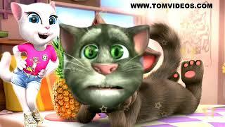 Thaki Thaki jaye cat song by Sohrab Ahmad