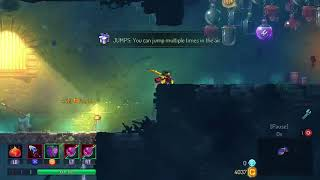 100 Cells Every Minute Fastest Way To Get Cells In Dead Cells (that I know of)