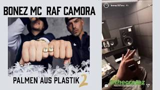 "PALMEN AUS PLASTIK 2 - HÖRPROBE - ""500 PS"""