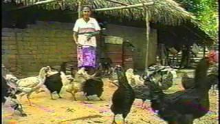 Juan Farfan - Hombre de mil Caminos. Audio Remasterizado