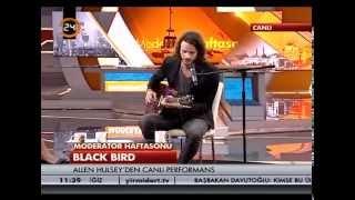 Allen Hulsey - Black Bird (Minor Version) Live on Kanal 24