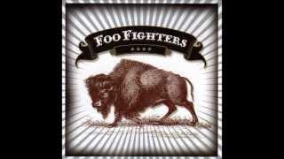 Foo Fighters - Skin and bones (good audio) with lyrics