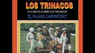 Los Trinacos - El Pajaro Carpintero ( Polka)