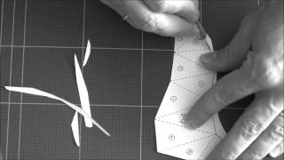 Paper Torso - Crease, Cut and Fold