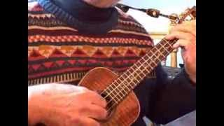 Is You Is, Or Is You Ain't (My Baby) - Solo Ukulele Jazz - Colin Tribe on LEHO