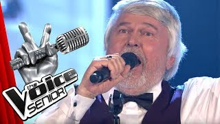 Whitney Houston - One Moment In Time (Willi Stein)   The Voice Senior   Finale   SAT.1 TV