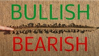 [Bullish or Bearish] S&P 500 - Find Your Line-in-the-Sand - Option Strategy for Beginners