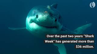 Shark Week is still a winner for Discovery Channel