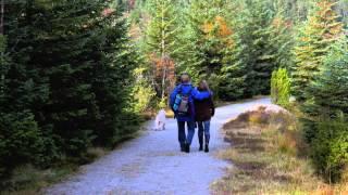 Latifah Phillips - Keep you safe (Gone missing - ending song)