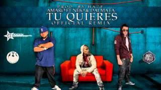 Amaro Ft. ñejo & Dalmata - Tu Quieres (nuevo Official Remix)