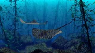 Aquagen ft Rozalla   Everybody's Free