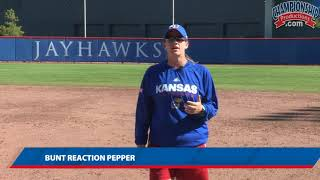 Two Pepper Drills for Softball Infielding Practice!