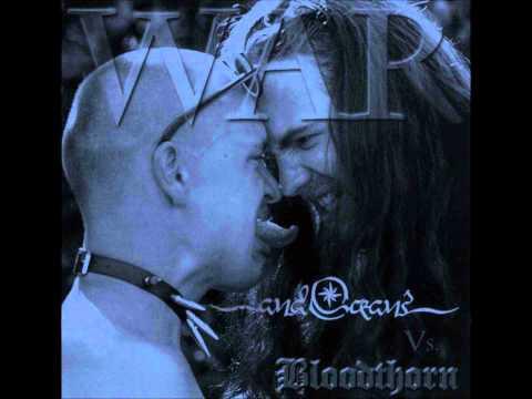 Spite de Bloodthorn Letra y Video
