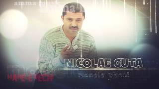 Nicolae Guta -Cine are firma si are bani