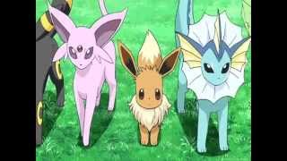 Pokemon Eevee Evolution AMV Take A Hint  Nightcore
