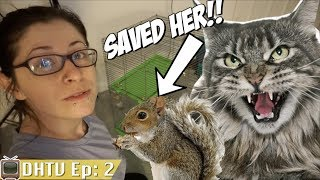 I saved a baby squirrel from getting eaten!