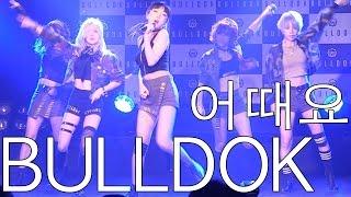 불독(BULLDOK) - 어때요(Why not) LIVE @데뷔쇼케이스