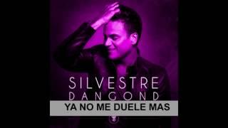 Silvestre Dangond Ya no me duele mas (cover masterizado)
