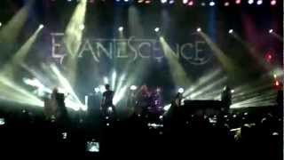 Evanescence - My Heart is Broken (live in Sao Paulo 2012)