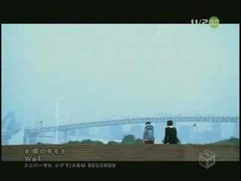 Boku No Kimochi de Koike Teppei Letra y Video