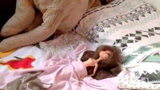 Quando eu virei uma boneca 1 (stop motion Barbie-Monster high)