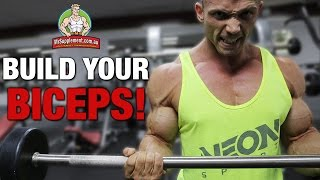 BUILD YOUR BICEPS! Ft. Bodybuilder Ryan James Pedone