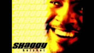 Shaggy - Keeping It Real