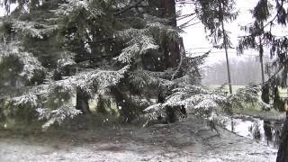 HD Snow Falling