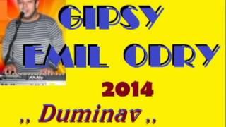Gipsy Emil Odry 2014  ,,Duminav,,