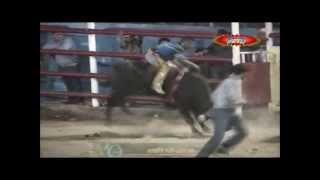 El As De Espadas - Banda La Bucanera (Sones Con Banda)