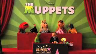 The Muppets get a Star on the Hollywood Walk of Fame