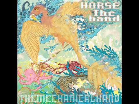 horse-the-band-birdo-r0flc4t5
