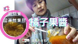 手工橘子果醬