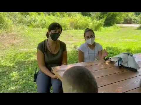 """Video: (VIDEO) Bambini del progetto P.I.T.E.R. """"esploratori"""" per un giorno alla scoperta della Riserva Naturale Oasi WWF """"Cratere degli Astroni"""""""