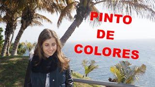 Pinto de colores - Jadel (cover Noemi)