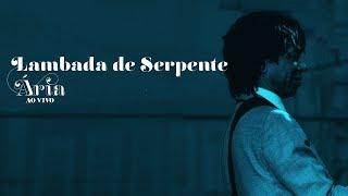 "Djavan: ""Lambada de Serpente"" - Ária Ao Vivo - Clipe Oficial"