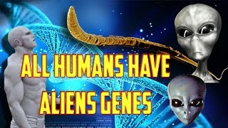 All humans have Alines genes