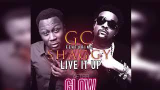 GC FT. SHAGGY - LIVE IT UP (Official Audio) | Prod. 2 HARD RECORDS | 21st Hapilos (2017)